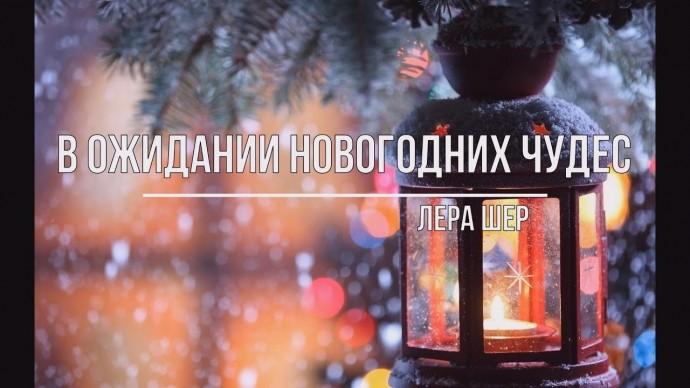 В ожидании новогодних чудес